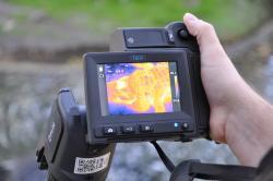 Termokamerou zachycené hospodaření s tělesným teplem aligátorů svědčí o skutečné funkci některých svalů v lebce. Kredit: University of Missouri.