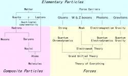 Elementární částice. Základní síly ve žlutém poli. Kredit: Headbomb / Wikimedia Commons.
