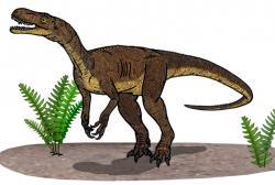 První praví dinosauři, jako byl tento teropod Eodromaeus murphi, se poprvé objevují na území Argentiny v době před asi 231 miliony let. Jak ukazují výzkumy, velmi rychle se poté šíří i do dalších částí světa. Kredit: Conty, Wikipedie (CC BY 3.0)