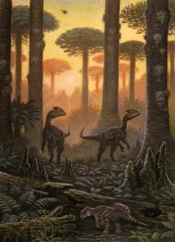 Ekologická scéna z období pozdní jury (asi před 158 miliony let) na území současné západní Číny. Dva tyranosauroidi druhu Guanlong wucaii pátrají po kořisti, zatímco nejstarší známý rohatý dinosaurus druhu Yinlong downsi se před nimi skrývá v popředí. Tak skromné byly vývojové počátky skupiny Ceratopsia, do níž patřil i Beg tse, žijící zhruba o 60 milionů let později. Kredit: ABelov2014; Wikipedie (CC BY 3.0)