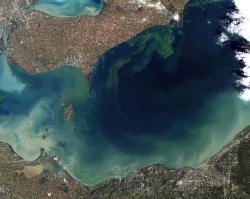 Satelitní snímek rozsáhlého vodního květu na Erijském jezeře (jímž prochází státní hranice mezi Kanadou a USA) v říjnu roku 2011. Přemnožené sinice zde způsobily malou ekologickou katastrofu, která ale nebyla ničím ve srovnání se situací na samotném konci křídy. Kredit: J. Allen a R. Simmon, NASA Earth Observatory, Wikipedie (volné dílo)