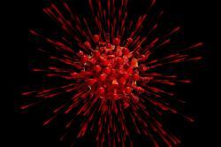 Jaké asi byly dávné koronaviry? Kredit: Pixabay, CC0.