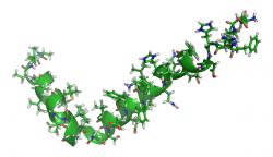 Amyloid beta (Kredit: Upraveno podle Crescenzi a kol., Eur. J. Biochem.269, Wikipedia, volné dílo)