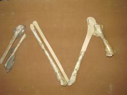 Původní nesprávná rekonstrukce kostí přední končetiny kretornise v expozici Orlického muzea v Chocni. Frič se domníval, že fosilie patřily křídovému praptákovi a porovnával je s kostmi předních končetin labutí. Teprve v roce 1887 prokázali britští paleontologové, že šlo ve skutečnosti o fosilie ptakoještěra. Kredit: Vlastní snímek autora, Wikipedie