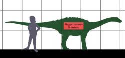 """Magyarosaurus byl na současné poměry relativně velkým zvířetem, vážícím víc než dospělý kůň. Ve světě sauropodních dinosaurů byla ale pouhým trpaslíkem, dosahujícím pouze asi jedné setiny hmotnosti svých největších příbuzných. Byl také asi šestkrát """"kratší"""" než největší známé druhy titanosaurů, jako byl geologicky starší Patagotitan mayorum nebo Argentinosaurus huinculensis. Kredit: Conty; Wikipedie (CC BY 3.0)"""