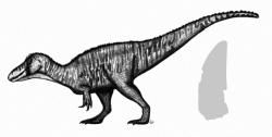 Rekonstrukce pravděpodobného vzezření a silueta fosilního zubu východoafrického spinosauridního teropoda druhu Ostafrikasaurus crassiserratus. Tento málo známý teropod z období pozdní jury představuje zřejmě dosud nejstaršího známého spinosaurida vůbec. Kredit: PaleoGeekSquared; Wikipedie (CC BY-SA 4.0)