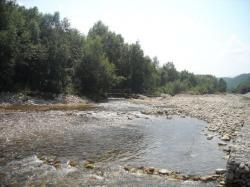 Rumunská řeka Sibișel, protékající oblastí velmi bohatou na zkameněliny z období pozdní křídy. Nedaleko řečiště se nacházejí výchozy geologického souvrství Sânpetru, v nichž byla objevena dinosauří fauna tzv. ostrova Hațeg. Právě z této oblasti pocházejí i zkameněliny trpasličího sauropoda magyarosaura. Kredit: Oguszt; Wikipedie (CC BY-SA 3.0)