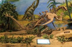 """Rekonstruovaná kostra jurského stegosaura druhu Gigantspinosaurus sichuanensis. Nápadný je zejména """"ramenní"""" či lopatkový"""" trn, který je prakticky stejně dlouhý jako celý trup tohoto jurského ptakopánvého dinosaura. Kredit: Zhangzhugang; Wikipedie (CC BY 4.0)"""