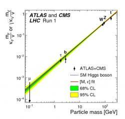 Závislost míchání higgse s různými částicemi na jejich hmotnosti by měla být podle Standardního modelu lineární v log-log měřítku. Experimentální data plně splňují předpověď Standardního modelu.