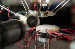 Octomilka visí bez úhony na konci sací trubice robotu. Robot využívá optiku k analýze chycené mušky. (Kredit: Stanford Univ.)
