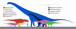 Velikostní porovnání dinosauří megafauny ze souvrství Huincul. Argentinosaurus huinculensis je zdaleka největším dinosaurem nejen v rámci ekosystémů tohoto souvrství, ale prozatím také největším známým suchozemským živočichem všech dob. Nejpřesnější údaj o hmotnosti tohoto obra je podle Paula 65 až 75 tun. Kredit: Slate Weasel; Wikipedie (volné dílo)
