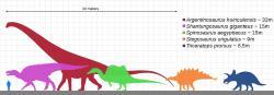 """Sauropodi byli giganti dokonce i ve srovnání s ostatními dinosaury. I ti největší ornitopodi a teropodi dosahovali hmotnosti """"pouze"""" v rozmezí 10 až 20 tun, byli tedy několikanásobně méně hmotní než jejich největší dlouhokrcí příbuzní. Zároveň byli rekordní sauropodi přinejmenším dvakrát delšínež největší kachnozobí dinosauři a spinosauridi, kteří dosahovali délky kolem 16 metrů. V současnosti se největší sloni a nosorožci ani neblíží rozměrům byť jen středně velkých sauropodů. Kredit: KoprX; Wikipedie (CC BY-SA 4.0)"""