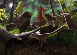 Umělecká představa o podobě malé části ekosystémů souvrství Prince Creek na území současné Aljašky. Před 70 miliony let zde byl ráj pozdně křídových dinosauřích populací, obývajících chladné až mrazivé polární krajiny nad 80. rovnoběžkou. Na ilustraci ceratopsid Pachyrhinosaurus perotorum (nahoře vvlevo a v pozadí) a mláďata dromeosauridních teropodů, z nichž nejbližší zobrazený jedinec loví malého savce druhu Unnuakomys hutchisoni. Kredit: Andrej Atuchin, ilustrace k odborné práci v periodiku PLoS ONE (CC BY 4.0).
