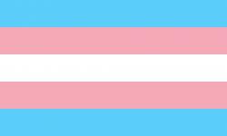 Vlajka hnutí trangender, volné dílo.