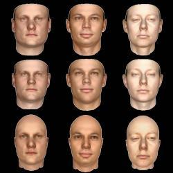 Horní řádek ukazuje 2D obrázky lidských tváří, dolní řádek jejich 3D modely ve starším software a prostřední řádek ukazuje modely vytvořené sPicture. Kredit: Kulkarni et al., MIT.