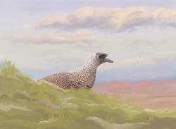 Rekonstrukce vzezření druhu Parvicursor remotus, alvarezsaurida blízce příbuzného nově popsanému druhu Trierarchuncus prairiensis. Na ilustraci je zobrazen opeřený dospělec, sedící na mechem vystlaném hnízdě. Parvikurzoři žili v období končícího věku kampán (asi před 72 miliony let) na území dnešního Mongolska. Byli tedy asi o 5 až 6 milionů let starší než jejich severoameričtí příbuzní. Při odhadované délce těla kolem 39 cm a hmotnosti asi 162 gramů patří také k nejmenším známým neptačím dinosaurům vůbec. Kredit: PaleoEquii, Wikipedia (CC BY-SA 4.0)