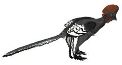 Anchiornis huxleyi, dinosauří trpaslík z čínské svrchní jury. Nebyl o mnoho větší a těžší než dnešní vrabec. Kredit: Matthew Martyniuk, licence CC BY 3.0 (Wikipedie)