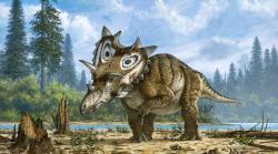 Spiclypeus shipporum se zvednutou přední končetinou, zasaženou infekcí. Toto závažné onemocnění zřejmě mohutnému rohatému dinosaurovi ztrpčovalo život po mnoho let. Kredit: Mike Skrepnick, převzato z webu Sci-News.com