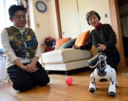 Hideko Mori (vlevo) se sestrou Yasuko neskrývají své štěstí. Pro jejich Aibu se našel dárce. Na tokijské klinice mu transplantovaly nové klouby. Kredit: Miwa Suzuki, AFP