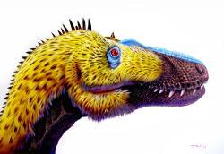 """Pokud dospělí tyranosauři nebyli opeření, pak přinejmenším jejich mláďata a adolescenti pravděpodobně ano. Zde rekonstrukce hlavy a krku mladého jedince, známého jako """"Jane."""" Někteří vědci považují tohoto jedince za zástupce samostatného druhu tyranosaurida Nanotyrannus lancensis. Kredit: Luis V. Rey, Luis V. Rey´s Updates Blog"""