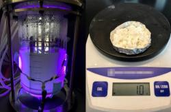 Produkty hybridních nanoorganismů. Kredit: Nagpal Lab / University of Colorado Boulder.