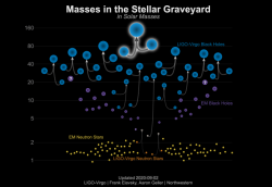 Přehled hmotností dosud pozorovaných černých děr zaznamenaných pomocí detekce gravitačních vln (modré značky), pomocí pozorování dvojhvězdných systémů s využitím elektromagnetického záření (fialové). Přehled hmotností neutronových hvězd pozorovaných pomocí detekce gravitačních vln (oranžové) a s využitím elektromagnetického záření (žluté). (Zdroj LIGO-Virgo/Northwestern U./Frank Elavsky & Aaron Geller).