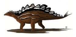 Moderní představa o vzezření živého stegosaura. Hřbetní desky mohly být u tohoto tyreoforního dinosaura pestře zbarveny a dodávat mu tak ještě impozantnějšího vzhledu. K obraně před predátory mu však sloužily pouze čtyři dlouhé kostěné bodce na konci ocasu. Ty byly mimochodem umístěny spíše horizontálně, nikoliv vertikálně. Kredit: Matthew Martyniuk, Wikipedie (CC BY-SA 4.0)