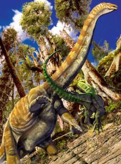 Supersaurus vivianaev obranném postoji před teropodem druhuTorvosaurus tanneri. Podobné scény se mohly na konci jurské periody před zhruba 150 miliony let odehrávat na západě současných Spojených států poměrně často. Vzhledem k desetinásobné hmotnostní převaze byl obří sauropod nesnadným úlovkem i pro tak velkého megalosaurida, jakým bylTorvosaurus. Kredit:Luis V. Rey, převzato z jeho blogu.