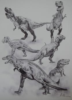 """Tyrannosaurus rexjakopop-kulturní ikona v proměnách času. Za dvanáct desetiletí od jeho objevu jsme anatomii a fyziologii tohoto obřího dravého dinosaura poznali mnohem lépe. Jak ale ukázal výzkum z roku 2013, """"vertikalizovaného rexe"""" mají mnozí z nás nejspíš usazeného hluboko pod kůží.Kredit:Vladimír Rimbala(ilustrace ke knize autoraLegenda jménem Tyrannosaurus rex, nakl. Pavel Mervart, 2019)."""