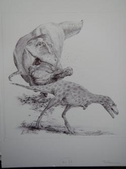 Ilustrace znázorňující mládě a dospělého jedince druhu Tarbosaurus bataar. Právě kostry juvenilních a subadultních jedinců tohoto velkého teropoda zmátly paleontology natolik, že pro ně v průběhu doby vymýšleli množství dnes již neplatných vědeckých jmen. Kredit: Vladimír Rimbala; ilustrace z autorovy knihy Legenda jménem Tyrannosaurus rex (nakl. Pavel Mervart, 2019)