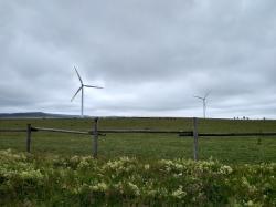 Větrné elektrárny mohou sice přispět k nízkoemisnímu mixu, ale jen omezeně (foto Vladimír Wagner).