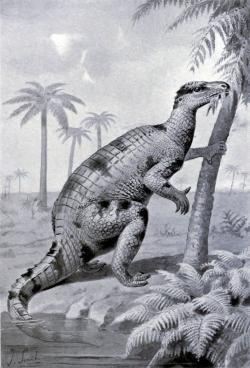 Značně zastaralá rekonstrukce vzezření druhu Iguanodon bernissartensis z přelomu 19. a 20. století. Iguanodon jako v pořadí druhý formálně popsaný rod dinosaura (1825) stojí poblíž začátku velmi dlouhé řady objevených druhohorních dinosaurů, která dnes čítá již přes 1300 druhů. Kredit: Joseph Smit; Wikipedie (volné dílo)