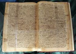 Konstantinopolský rukopis Aristotelova díla Historia animalium, 12. století. Kredit: Biblioteca Medicea Laurenziana, Wikimedia Commons.