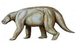 Výtvarná rekonstrukce pantodontního savce druhuBarylambda faberi. Tento až 650 kilogramů vážící živočich by se téměř s jistotou nevyvinul,pokud by na konci křídy nevyhynuli neptačí dinosauři. První zástupci tohoto tvora o velikosti medvěda se objevili v době před asi 60 miliony let, tedy zhruba 6 milionů let po vymírání na konci křídy.Kredit:Dmitrij Bogdanov; Wikipedie (CC BY 3.0)