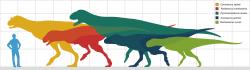 Abelisauridi byli významnou skupinou teropodních dinosaurů střední velikosti, s tělesnou délkou v rozmezí od 5 do 9 metrů. Původce zkamenělé stopy, objevené na území Bolívie, byl však nepochybně větší. Je možné, že dosahoval délky přes 12 metrů a hmotnosti mnoha tun. Dokud ale neobjevíme kosterní fosilie dospělého jedince (což se dost možná nikdy nestane), jistotu ohledně jeho rozměrů mít nebudeme. Kredit: Paleocolour; Wikipedie (CC BY-SA 4.0)