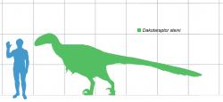 Odhadovaná maximální velikost dakotaraptora podle většího jedince, dochovaného ve fosilním záznamu. Při délce až šest metrů mohl dosahovat hmotnosti několika stovek kilogramů, vzhledem k velmi lehké stavbě těla byl ale relativně štíhlý a agilní. Přesto je nesrovnatelně robustnější než drtivá většina zástupců této čeledi, z nichž někteří dosahovali jen velikosti kura domácího. Kredit: Matthew Martyniuk, Wikipedie (licence CC BY 4.0)