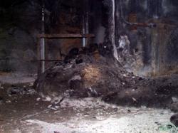 Ikonická Sloní noha (zdroj Černobylská jaderná elektrárna).