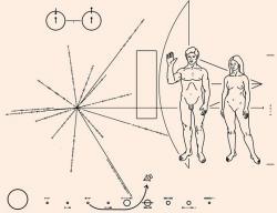 Na zlaté plaketě se zprávou pro nálezce sondy Pioneer 10 byla poloha Země vyznačena také pomocí směru ke čtrnácti pulsarům a jejich periodami. Kredit: NASA.