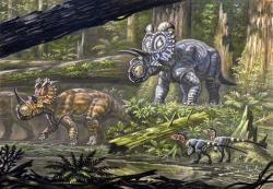 Ekosystém geologického souvrství Oldman s ceratopsidy rodů Coronosaurus (níže vlevo) a Albertaceratops. V popředí dvojice opeřených dromeosauridů, pravděpodobně rodu Dromaeosaurus nebo Hesperonychus. Tehdejší ekosystémy patřily k druhově nejbohatším v celé historii existence druhohorních neptačích dinosaurů. Kredit: ABelov2014; Wikipedie (CC BY-SA 3.0)