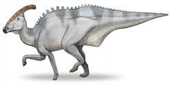 Výtvarná rekonstrukce přibližného vzezření charonosaura. Celkově se velmi podobá parasaurolofovi, byl však mírně mohutnější a celkově větší. Délka dospělých jedinců činila asi 10 až 13 metrů a hmotnost dosahovala přibližně 5 až 7 tun. Jednalo se tedy o jednoho z největších známých asijských ornitopodů. Kredit: Debivort; Wikipedie (CC BY-SA 3.0)