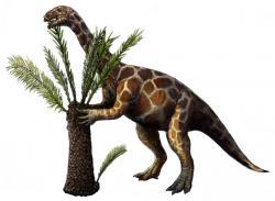 Rekonstrukce vzezření druhu Unaysaurus tolentinoi, sauropodomorfa stejně geologicky starého a blízce příbuzného druhu Macrocollum itaquii. Tito menší býložraví sauropodomorfové při své velikosti člověka až menšího koně ještě nedávali tušit, do jak gigantických rozměrů jednou dorostou jejich evoluční potomci – sauropodní dinosauři. Kredit: Michael B. H., Wikipedie (CC BY-SA 3.0)