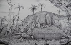 Tyrannosaurus rex byl jedním z největších známých dravých dinosaurů, z hlediska tělesné hmotnosti dokonce překonával i největší známé karcharodontosauridy. Rychlost jeho růstu však byla mnohem větší a jeho dospívání rychlejší. Plné dospělosti totiž dosahoval již kolem 20. roku života a dožíval se nanejvýš asi 30 až 35 let. Kredit: Vladimír Rimbala, ilustrace pro autorovu knihu Legenda jménem Tyrannosaurus rex (nakl. Pavel Mervart, 2019).