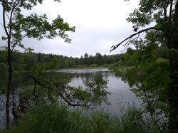 Zadržování vody v krajině bude stále důležitější její funkcí (foto Vladimír Wagner).