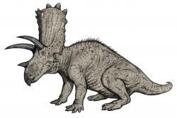 Obrazová rekonstrukce jednoho z pouhých osmi druhů ptakopánvých dinosaurů, popsaných v loňském roce. Je jím chasmosaurinní ceratopsid druhu Terminocavus sealeyi, žijící v období pozdní křídy (věk kampán, asi před 75,0 až 74,6 milionu let) na území současného Nového Mexika v USA. Byl zhruba stejně velký jako jeho blízcí příbuzní z rodů Pentaceratops a Anchiceratops, dosahoval tedy délky až kolem 6 metrů. Kredit: Michael B. H.; Wikipedie (CC BY-SA 3.0)