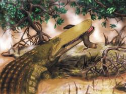 Aegisuchus witmeri byl obří krokodýlovitý plaz, obývající v době před 95 miliony let severní části Afriky. Konzervativní odhady délky pro tento druh mají rozpětí asi 10 až 15 metrů, ty odvážnější dokonce přesahují 20 metrů. Jednalo se tedy nepochybně o jednoho z největších ne-dinosauřích plazů všech dob. Kredit: Henry P. Tsai, University of Missouri; Wikipedie (CC BY 2.5)