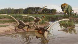 """Rekonstrukce přirozeného prostředí druhu Dineobellator notohesperus (v popředí). Ekosystémy v rámci geologického souvrství Ojo Alamo patřily k posledním životním protředím s bohatou přítomností dinosauří megafauny. Opeřeným """"srpodrápým"""" predátorům zde dělaly společnost početné druhy kachnozobých i ceratopsidních dinosaurů, mnoha dalších teropodů a například i obřích sauropodů. Na ilustraci trojice dromeosauridů v přítomnosti ceratopsida druhu Ojoceratops fowleri a obřího titanosaura druhu Alamosaurus sanjuanensis. Kredit: Sergej Krasovskij, v rámci práce Jasinski et al. (2020); Wikipedie (CC BY 4.0)"""