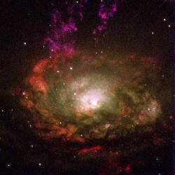 Galaxie Kružítko je aktivní Seyfertova galaxie typu II. Kredit: NASA/ESA.