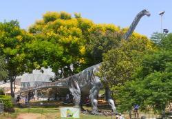Model obřího titanosaurního sauropoda druhu Argentinosaurus huinculensis téměř v životní velikosti. Počítačový model lokomoce tohoto obřího dinosaura ukázal, že se i přes svou osmdesátitunovou hmotnost dokázal pohybovat překvapivě svižně – rychlostí až kolem 8 km/h. Rychlejší ostatně být nemusel – pokud dorostl do plné velikosti, pak pravděpodobně neměl žádného přirozeného nepřítele. Kredit: MathKnight a Zachi Evenor; Wikipedie (CC BY 3.0)