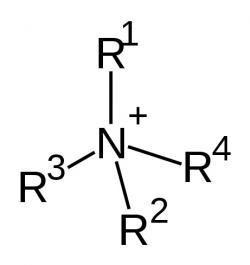 Kvartérní amoniový kation. Kredit: Fvasconcellos / Wikimedia Commons.