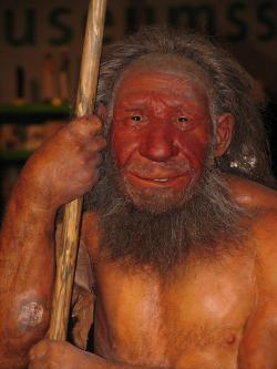 Homo neanderthalensis. ( rekonstrukce od Stefana Scheera, CC BY 2.5 via Wikimedia Commons)